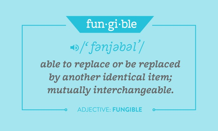 fungible.jpg