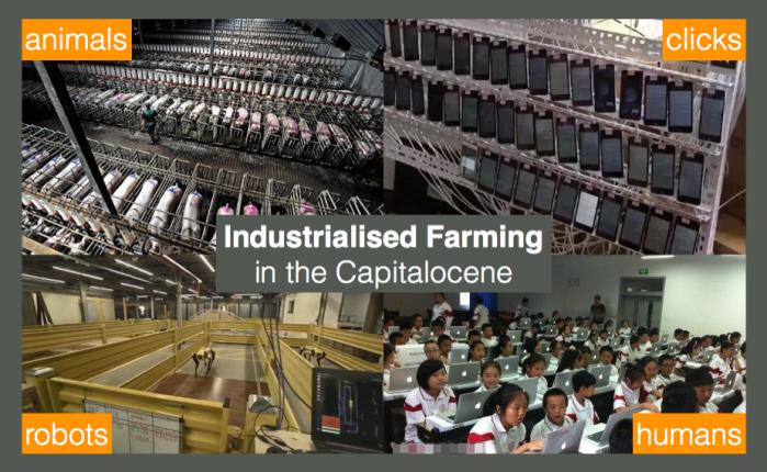 industrialisedfarming 4.0.png